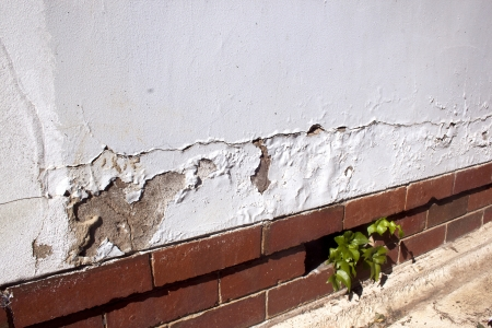 cracking and peeling paint due to rising damp