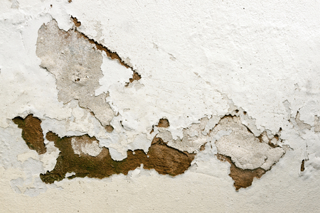 bubbling and peeling paid as a result of rising damp