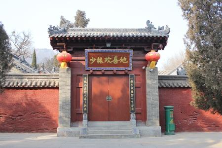 Joyful Shaolin