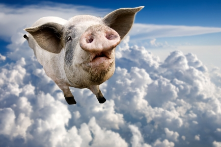 A pig flying through the clouds in the sky