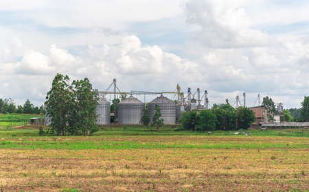 Rural landscape and agricultural production area. Set of grain storage silos in grain production farm in Brazil, border with uruguay. Silos for storing rice and soy beans.