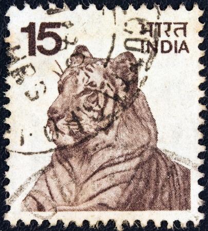 INDIA - CIRCA 1974: A stamp printed in India shows a Bengal tiger, circa 1974.