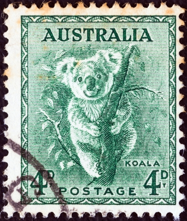 AUSTRALIA - CIRCA 1937: A stamp printed in Australia shows a koala, circa 1937.