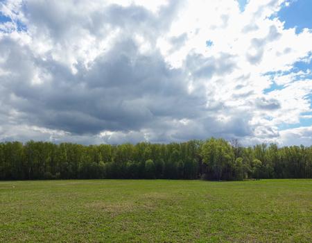 Photo pour Landscape cloudy sky and green field. Russia. - image libre de droit