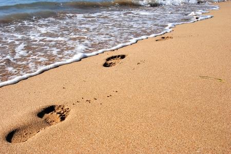 footprint on the sea sand beach