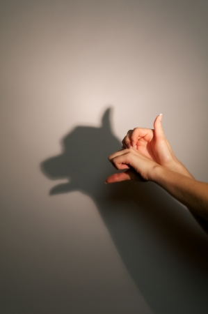silhouette shadow of dog or bear from young womans hands