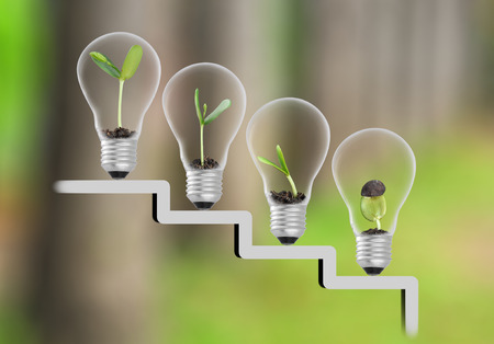 Plant in lightbulb on staircase and tree blur background , growth , development concept