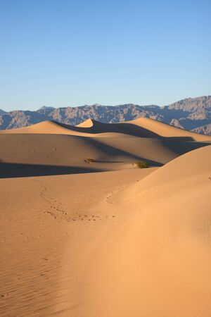 Photo for Death Valley Sand Dunes - Royalty Free Image