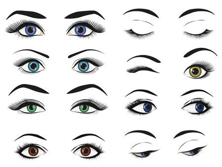 Illustration pour Female woman eyes and brows image collection set - image libre de droit