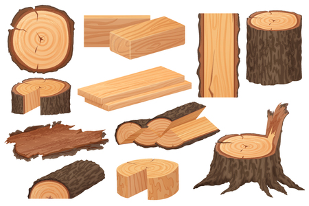 Wood industry raw materials. Realistic high detailed vector production samples. Tree trunk, logs, trunks, woodwork planks, stumps, lumber branch, twigs