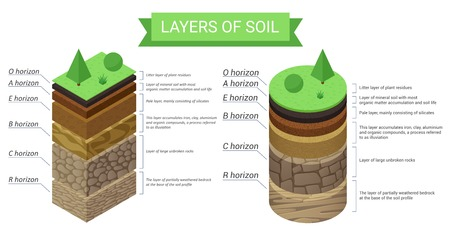 Illustration for Education isometric diagram and detailed description of soil layers. Plant residue, green grass, fine mineral particles, sand,clay, humus and stones vector illustration. - Royalty Free Image