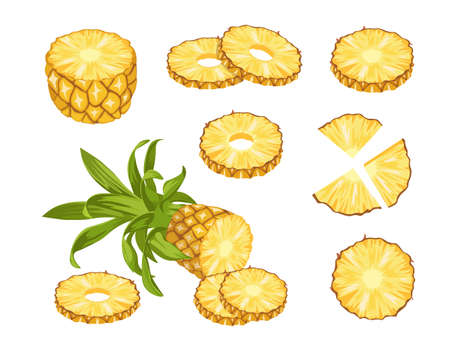 Illustration pour Pineapple Tropical Fruits, Whole, Half and Sliced Natural Fresh Plant. Exotic Juicy Food. Ripe Healthy Organic Product - image libre de droit