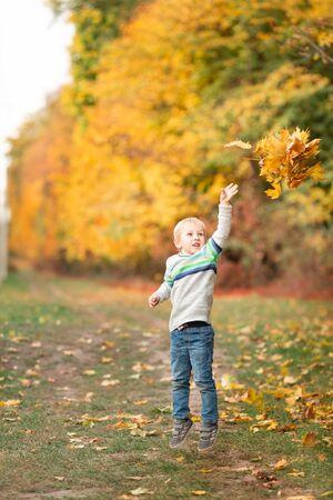 Photo pour Happy little boy gathering autumn leaves in the park in autumn - image libre de droit