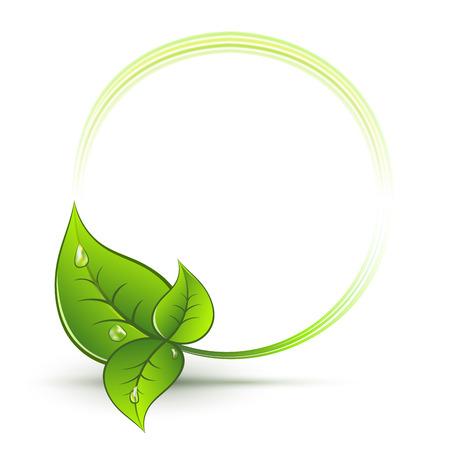 Illustration pour Green leaves round frame with white copy space vector emblem. - image libre de droit