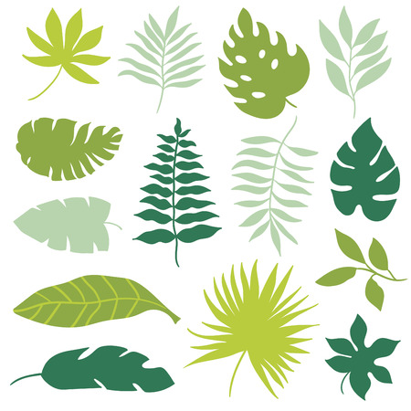 Illustration for tropical leaves set - Royalty Free Image