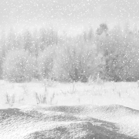 Winter Christmas background with snowdrift against the forest