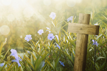 Photo for Wooden cross and purple flower with sunlight on the field - Royalty Free Image