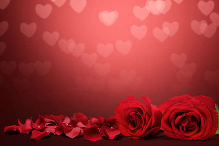 Photo pour Red rose and rose petals on a colored background. Valentines day - image libre de droit