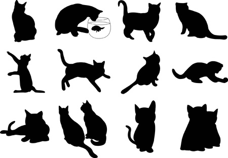 Illustration cats silhouette