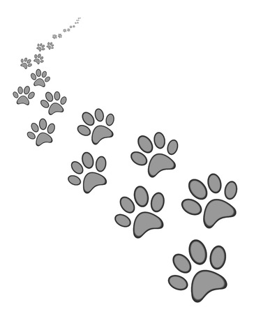Cute dog or cat paw print, on white  background