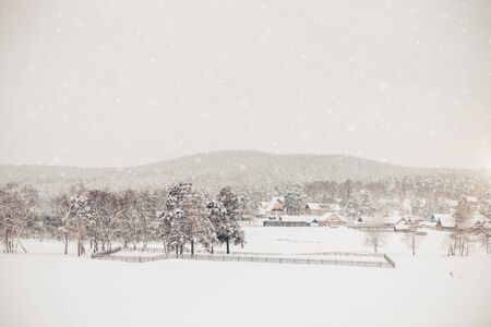 Photo for Beautiful white winter in the village, travel, snowfall - Royalty Free Image