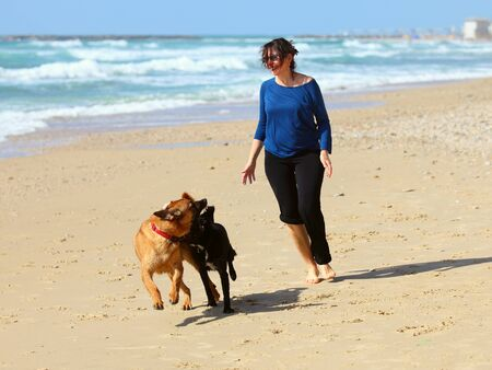 Photo pour Mature Woman  playing with her dogs on the beach - image libre de droit