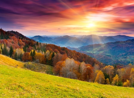 Photo pour the mountain autumn landscape with colorful forest - image libre de droit
