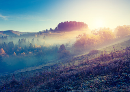 Fantastic sunny hills under morning sky. Dramatic scenery in Carpathian, Ukraine