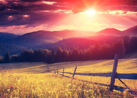 Foto de Fantastic sunny hills glowing by sunlight. Dramatic scenery. Carpathian, Ukraine, Europe. Beauty world. Retro style filter. Instagram colorful toning effect. - Imagen libre de derechos