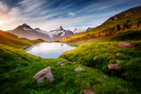 Photo pour Panorama of Mt. Schreckhorn and Wetterhorn above Bachalpsee lake. Dramatic and picturesque scene. Location place Swiss alps, Bernese Oberland, Grindelwald, Europe. Soft filter effect. Beauty world. - image libre de droit