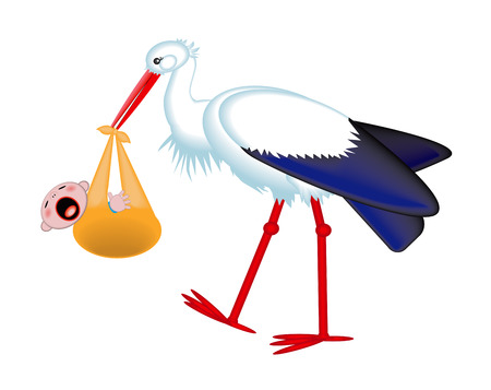 Cute stork delivering a crying newborn baby, isolated on a white background.