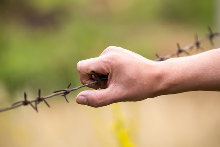 human hand and the steel barbed wire