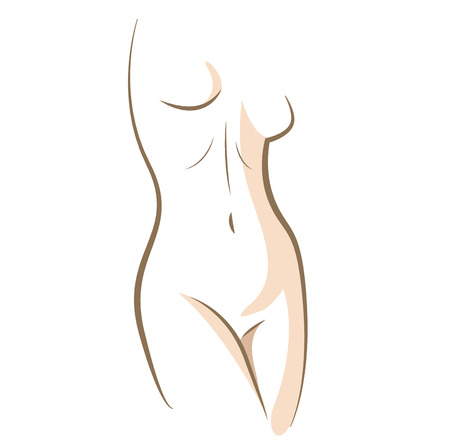 Close up woman body, drawn in vector lines
