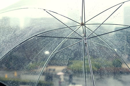 Photo for Transparent umbrella in rainy day - Royalty Free Image