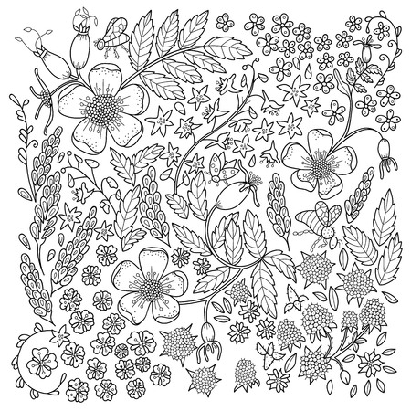 Illustration pour Antistress coloring page for adults. Color book with flowers. Floral black and white line illustration - image libre de droit