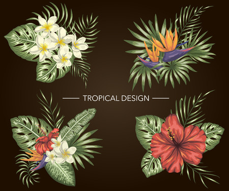 Illustration pour Vector set of tropical compositions with hibiscus,  plumeria,  strelitzia flowers,  monstera and palm leaves on black background. Bright realistic watercolor style exotic design elements. - image libre de droit