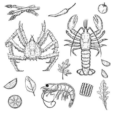 Illustration pour Set of hand-drawn seafood. Crustacea. Vector cartoon illustrations. - image libre de droit