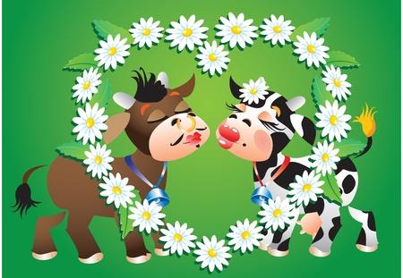 Cartoon kissing cows and camomile border