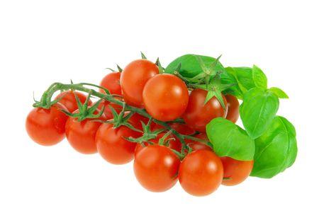 Tomate und Basilikum - tomato and basil 09