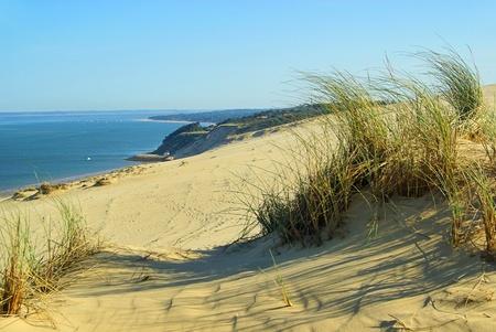 Dune du Pyla 12