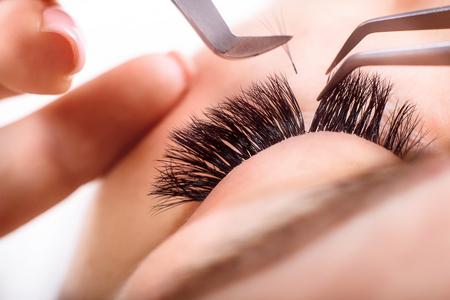 Photo pour Eyelash Extension Procedure. Woman Eye with Long Eyelashes. Lashes, close up, macro, selective focus. - image libre de droit