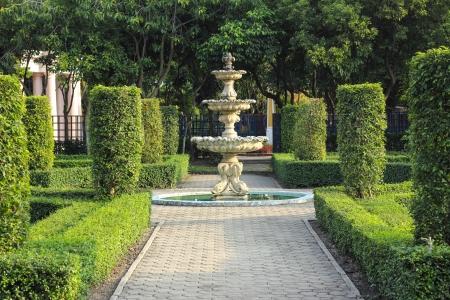 Garden path way with under t