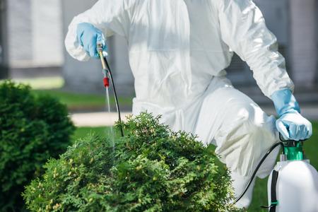 Photo pour cropped image of pest control worker in uniform spraying chemicals on bush - image libre de droit