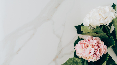 Photo pour top view of pink and white hydrangea flowers on marble surface with copy space - image libre de droit