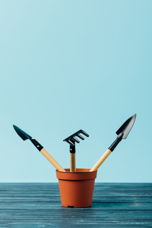 close up view of gardening tools in flowerpot on wooden tabletop on blue