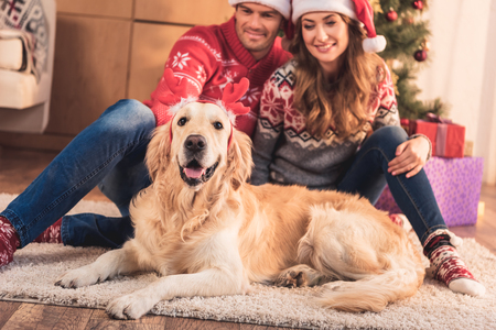 Happy couple in Santa hats sitting at Christmas tree with dog in deer horns