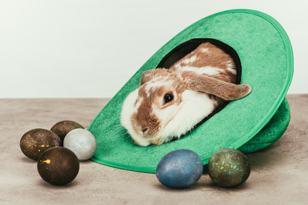 Photo for Domestic rabbit lying in green hat with painted Easter eggs on surface - Royalty Free Image