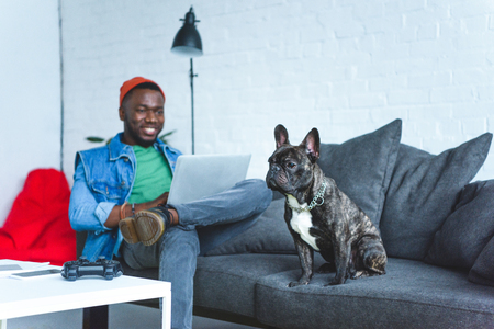 Photo pour Handsome african american man working on laptop while sitting on sofa with bulldog - image libre de droit