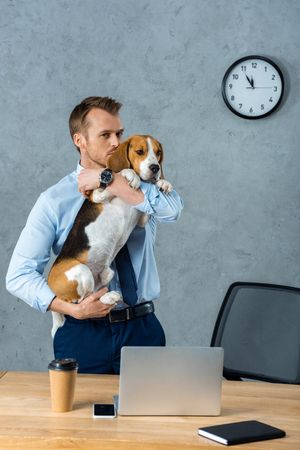 Foto de handsome businessman holding beagle near table with smartphone and laptop in modern office - Imagen libre de derechos