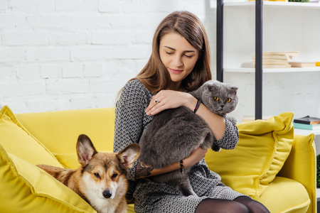 Photo pour beautiful woman sitting on sofa with pembroke welsh corgi and adorable scottish fold cat - image libre de droit
